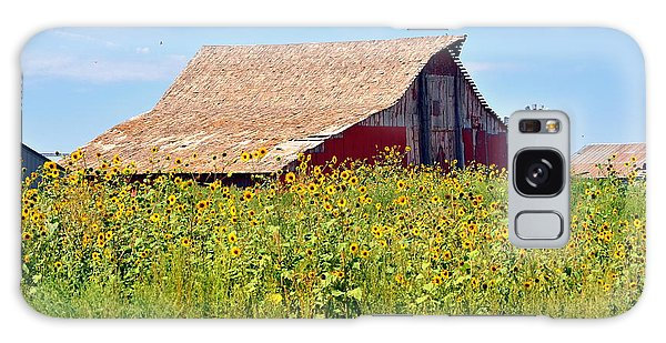 Red Barn In Summer Galaxy Case by Clarice  Lakota