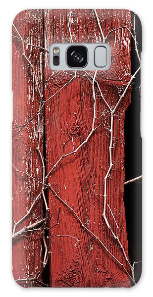 Red Barn Wood With Dried Vines Galaxy Case by Rebecca Sherman