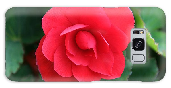Red Begonia Galaxy Case by Sergey Lukashin