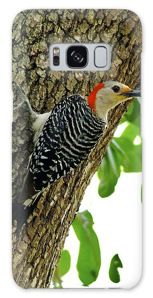 Red-bellied Woodpecker. Galaxy Case