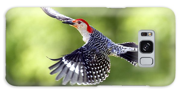 Red-bellied Woodpecker Flight Galaxy Case by David Lester