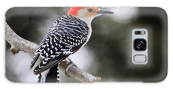 Red-bellied Woodpecker Galaxy Case by Gary Hall
