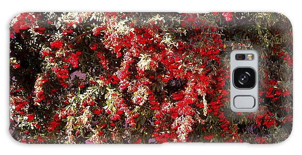 Red Berry Bushes Galaxy Case