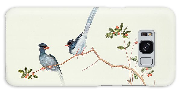 Red Billed Blue Magpies On A Branch With Red Berries Galaxy Case by Chinese School