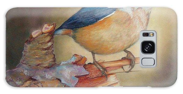 Red-breasted Nuthatch Bird Galaxy Case