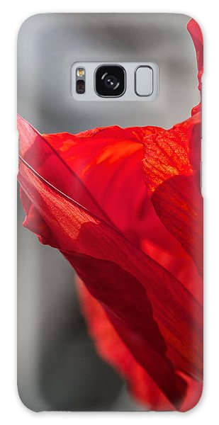 Red Canna Galaxy Case