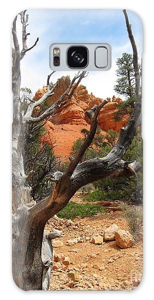 Red Canyon Tree And Rocks Galaxy Case by Debra Thompson