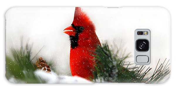 Red Cardinal Galaxy Case