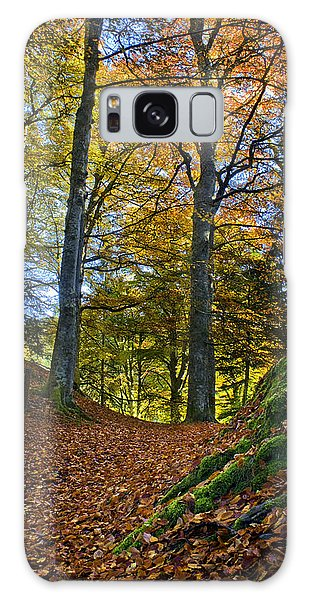 Red Carpet In Reelig Glen During Autumn Galaxy Case