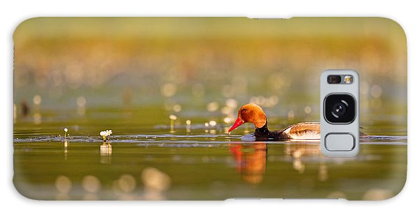 Red-crested Pochard Galaxy Case