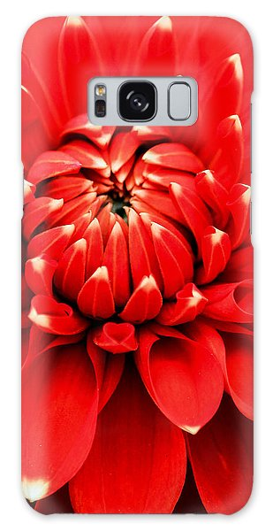 Red Dahlia With White Tips Galaxy Case by E Faithe Lester