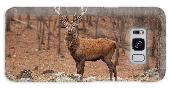 Red Deer Galaxy Case