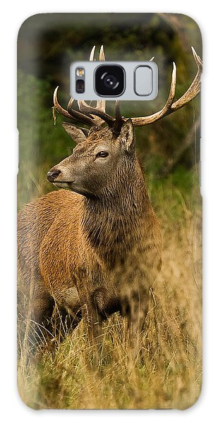 Red Deer Stag Galaxy Case by Paul Scoullar