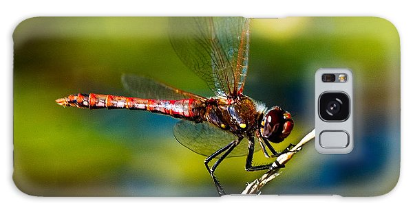Galaxy Case featuring the photograph Red Dragonfly by Mae Wertz