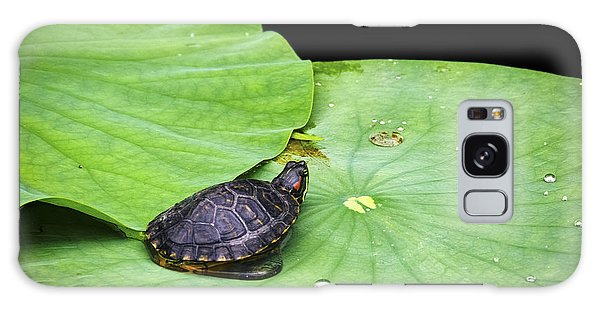 Red-eared Slider Galaxy Case by Greg Reed