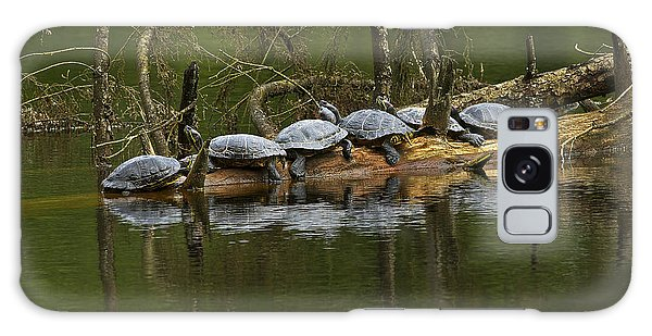 Red-eared Slider Turtles Galaxy Case