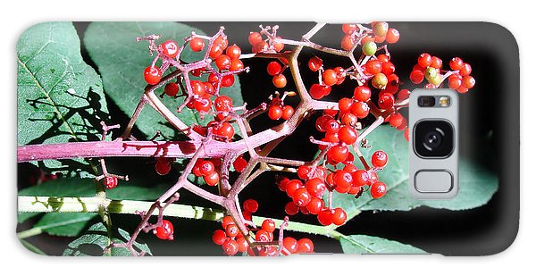 Red Elderberry Galaxy Case