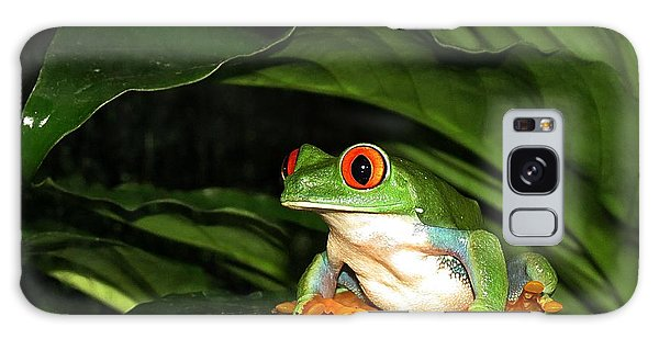 Red Eyed Green Tree Frog Galaxy Case