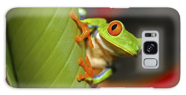 Red Eyed Leaf Frog Galaxy Case