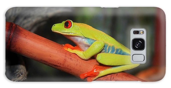 Red Eyed Tree Frog Galaxy Case by Cathy  Beharriell