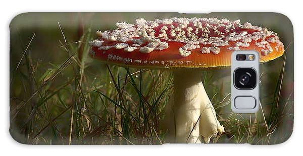 Red Fairy Mushroom Galaxy Case