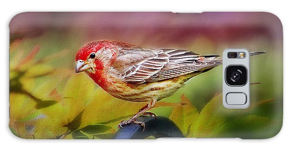 Red Finch Galaxy Case by Darren Fisher