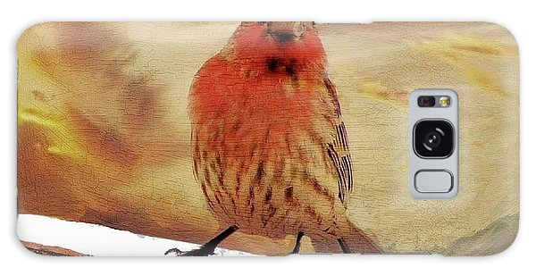 Red Finch On Red Brick Galaxy Case by Janette Boyd