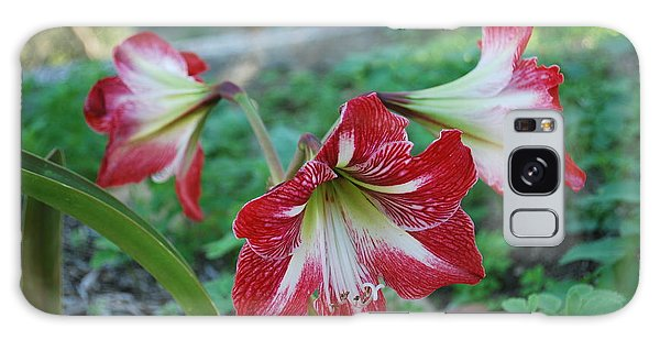 Red Flower 1 Galaxy Case by George Katechis