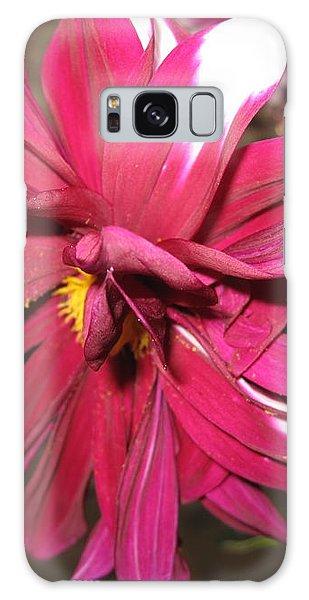 Red Flower In Bloom Galaxy Case