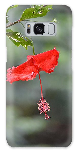 Red Flower St. John's Galaxy Case