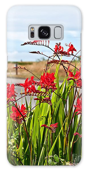 Red Flowers Crocosmia Lucifer Montbretia Plant Art Prints Galaxy Case