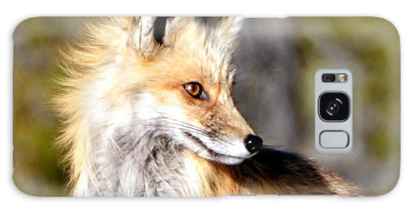Red Fox Face Galaxy Case