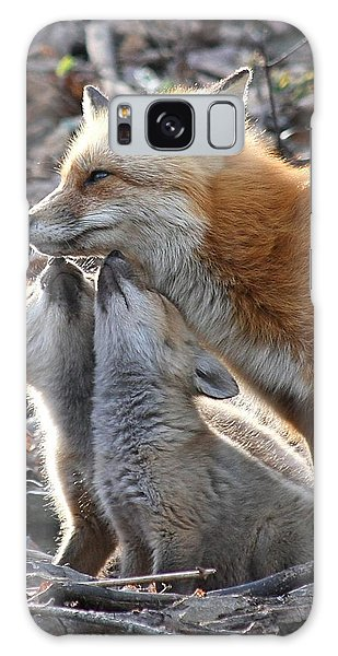 Red Fox Kits And Parent Galaxy Case