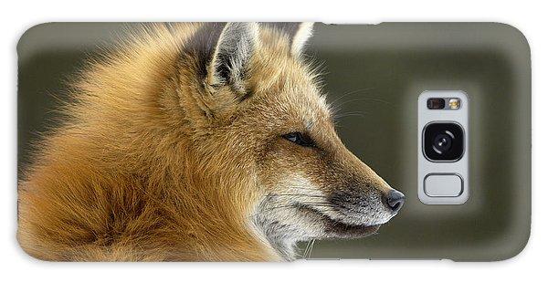 Sly Galaxy Case - Sly Red Fox by Malcolm Schuyl