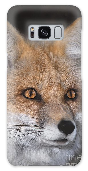 Red Fox Portrait Wildlife Rescue Galaxy Case