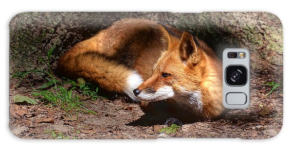 Red Fox Resting Galaxy Case by Kathy Baccari