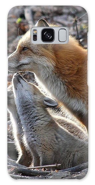 Red Fox With Kits Galaxy Case
