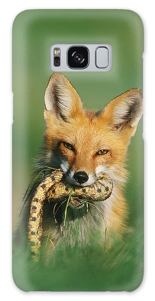 Red Fox With Snake Galaxy Case