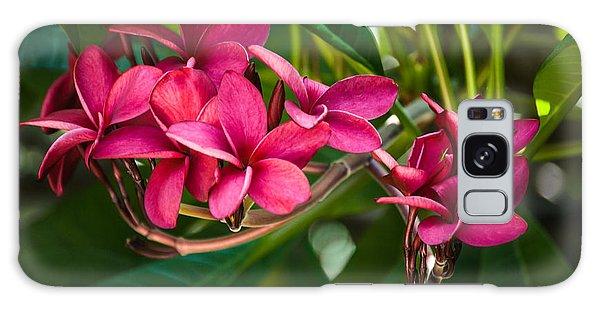Red Frangipani Flowers Galaxy Case