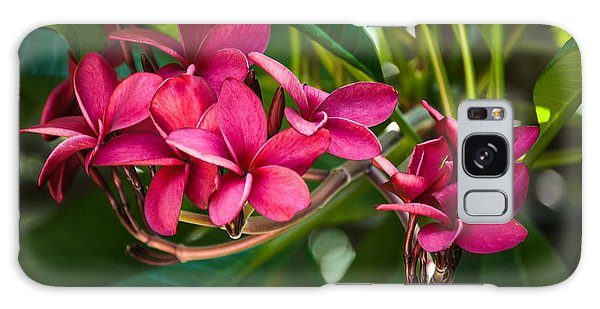 Red Frangipani Flowers Galaxy Case