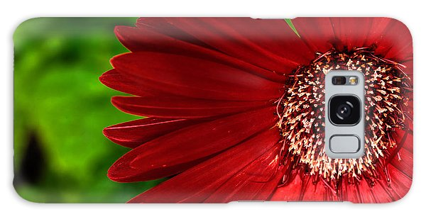 Red Gerber Daisy Galaxy Case