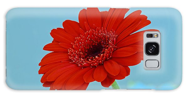 Red Gerbera Daisy Galaxy Case by Scott Carruthers