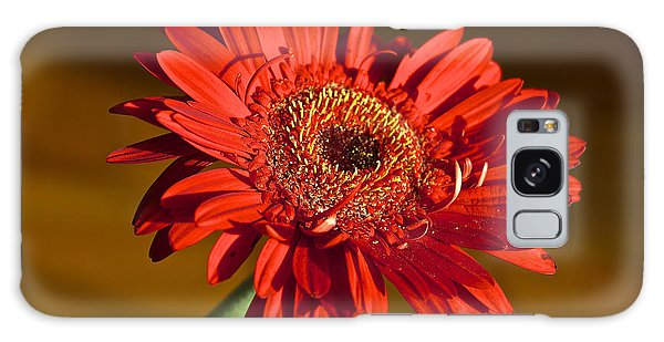 Red Gerbera Galaxy Case by Venetia Featherstone-Witty