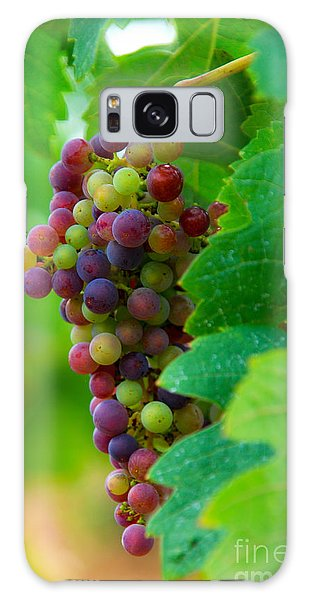 Red Grapes Galaxy Case