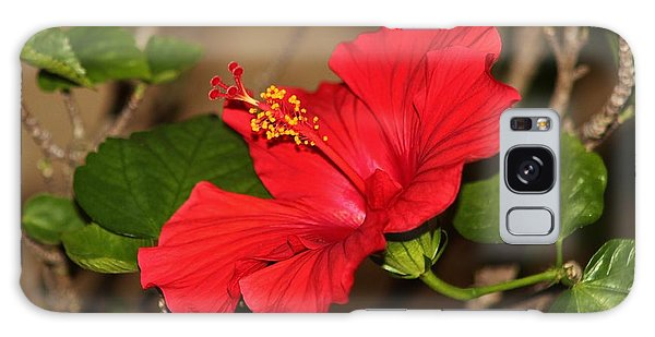 Red Hibiscus Flower Galaxy Case by Cynthia Guinn