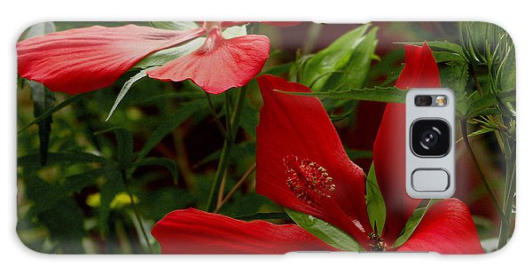 Red Hibiscus Blooms Galaxy Case