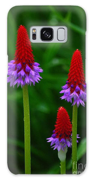 Red Hot Pokers Galaxy Case