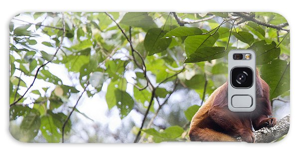 Red Howler Monkey Sitting In A Tree Galaxy Case