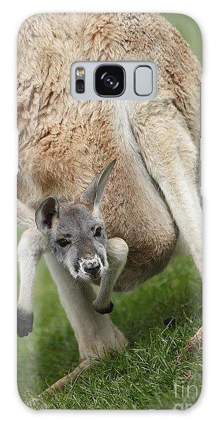Red Kangaroo Joey Galaxy Case by Craig Dingle