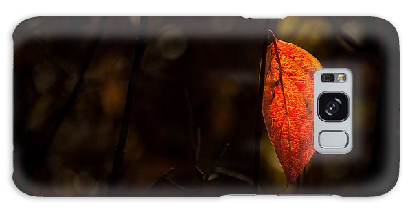 Red Leaf 2 Galaxy Case by Jay Stockhaus